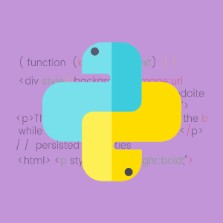 Professional Diploma In Python Programming (PP)